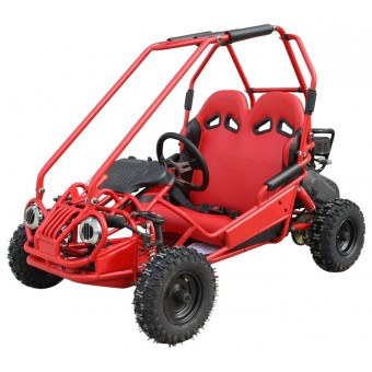 Off-Road Mini Buggy 163cc